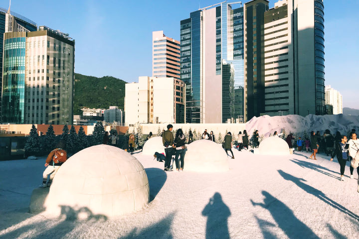The White Planet 白雪天地