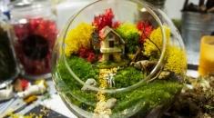 Glass Farm 玻璃盆景